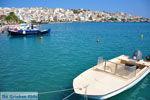 Sitia | Lassithi Kreta | Griekse Gids foto 24 - Foto van De Griekse Gids