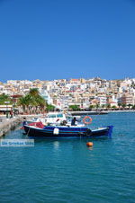 Sitia | Lassithi Kreta | Griekse Gids foto 25 - Foto van De Griekse Gids