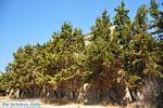 Moni Toplou | Klooster Toplou Lassithi | nr17 - Foto van De Griekse Gids