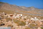 Bij Xerokambos   Lassithi Kreta   foto 30