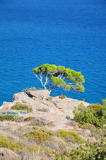 Agia Fotia   Lassithi Kreta   Foto 2 - Foto van De Griekse Gids