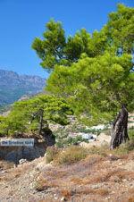 Agia Fotia | Lassithi Kreta | Foto 20 - Foto van De Griekse Gids