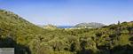 Achlada | Heraklion Kreta | Foto 1 - Foto van Markos Mourtzanakis