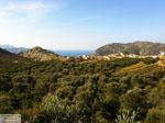 Achlada | Heraklion Kreta | Foto 2 - Foto van Markos Mourtzanakis