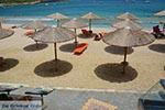 GriechenlandWeb.de Agia Pelagia Kreta - Departement Heraklion - Foto 1 - Foto GriechenlandWeb.de