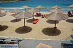 Agia Pelagia Kreta - Departement Heraklion - Foto 1 - Foto van De Griekse Gids