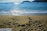 Agia Pelagia Kreta - Departement Heraklion - Foto 25 - Foto van De Griekse Gids