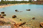 GriechenlandWeb.de Agioi Apostoloi Kreta - Departement Chania - Foto 27 - Foto GriechenlandWeb.de