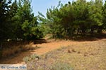 Agioi Apostoloi Kreta - Departement Chania - Foto 34 - Foto van De Griekse Gids