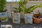 Agios Georgios beach - Rethymnon Kreta 20 - Foto van De Griekse Gids