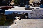 Agios Nikolaos Kreta - Departement Lassithi - Foto 54 - Foto van De Griekse Gids