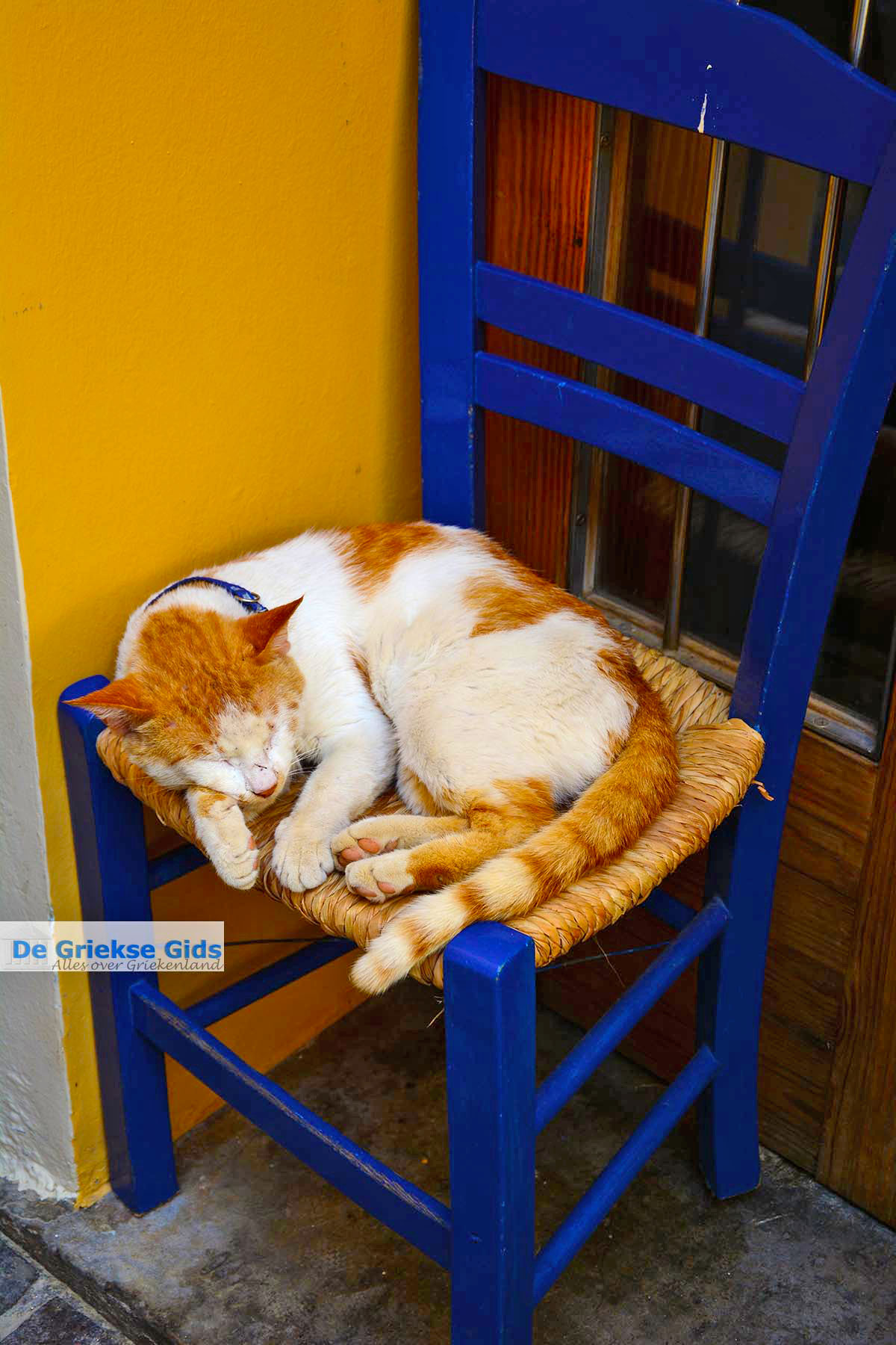 foto Chania stad Kreta - Departement Chania - Foto 34