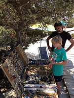 Chrissi eiland - Departement Lassithi Kreta - Foto 3 - Foto van Onno Cleijpool