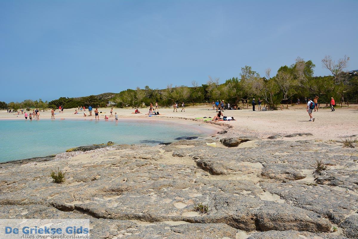 foto Elafonisi Kreta - Departement Chania - Foto 11
