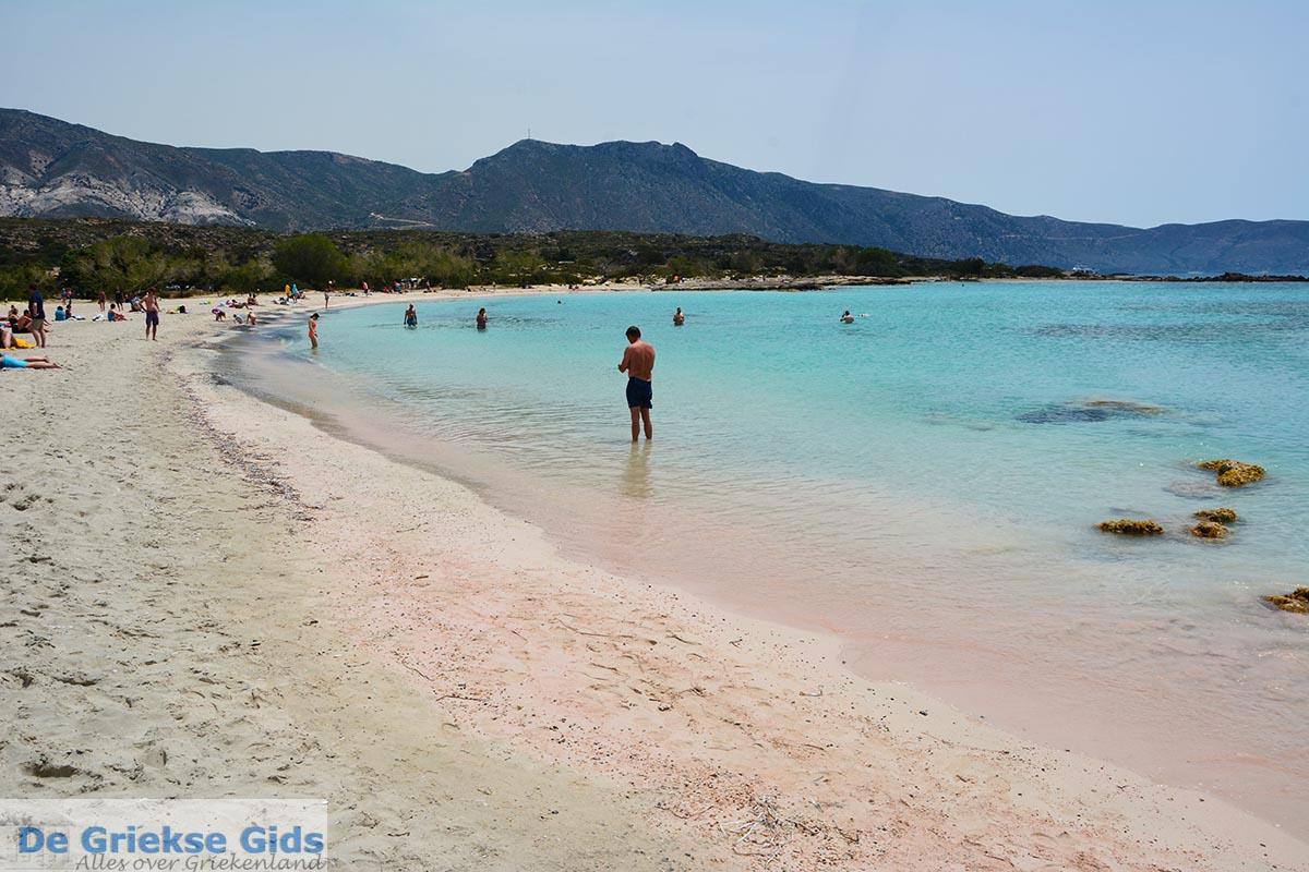 foto Elafonisi Kreta - Departement Chania - Foto 25
