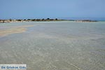 Elafonisi Kreta - Departement Chania - Foto 21 - Foto van De Griekse Gids
