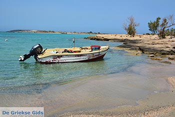 Elafonisi Kreta - Departement Chania - Foto 1