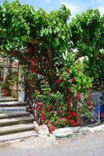 GriechenlandWeb.de Elos Kreta - Departement Chania - Foto 3 - Foto GriechenlandWeb.de