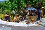 GriechenlandWeb.de Elos Kreta - Departement Chania - Foto 5 - Foto GriechenlandWeb.de