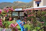 Falasarna Kreta - Departement Chania - Foto 31 - Foto van De Griekse Gids