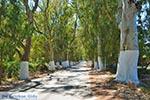 Georgioupolis Kreta - Departement Chania - Foto 29 - Foto van De Griekse Gids
