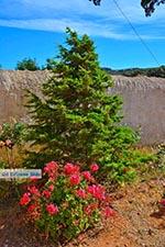 Gouverneto klooster Kreta - Departement Chania - Foto 15 - Foto van De Griekse Gids