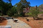Gouverneto klooster Kreta - Departement Chania - Foto 19 - Foto van De Griekse Gids
