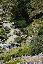 Imbros kloof Kreta - Departement Chania - Foto 9 - Foto van De Griekse Gids