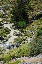 Imbros kloof Kreta - Departement Chania - Foto 10 - Foto van De Griekse Gids