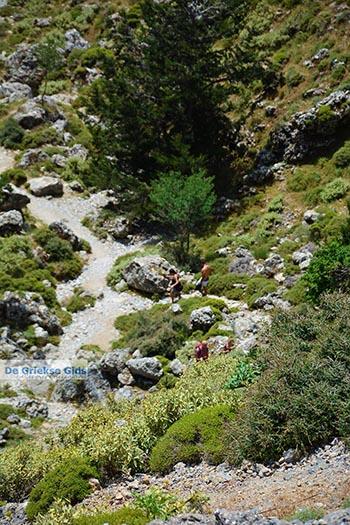 Imbros kloof Kreta - Departement Chania - Foto 10 - Foto van https://www.grieksegids.nl/fotos/kreta/imbros-kloof/normaal/imbros-kloof-kreta-010.jpg