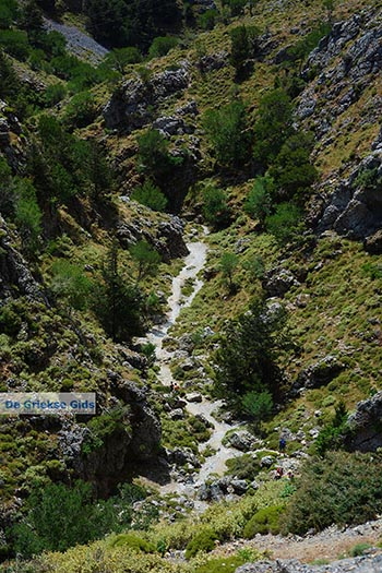 Imbros kloof Kreta - Departement Chania - Foto 15 - Foto van https://www.grieksegids.nl/fotos/kreta/imbros-kloof/normaal/imbros-kloof-kreta-015.jpg