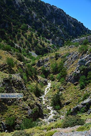 Imbros kloof Kreta - Departement Chania - Foto 16 - Foto van https://www.grieksegids.nl/fotos/kreta/imbros-kloof/normaal/imbros-kloof-kreta-016.jpg