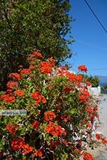 Kalyviani Kreta - Departement Chania - Foto 3 - Foto van De Griekse Gids