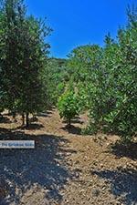 Katalagari Kreta - Departement Heraklion - Foto 1 - Foto van De Griekse Gids