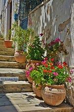 Katalagari Kreta - Departement Heraklion - Foto 13 - Foto van De Griekse Gids
