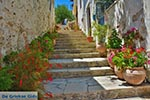 Katalagari Kreta - Departement Heraklion - Foto 15 - Foto van De Griekse Gids