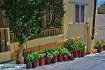 Katalagari Kreta - Departement Heraklion - Foto 18 - Foto van De Griekse Gids