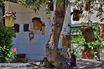 GriechenlandWeb.de Katalagari Kreta - Departement Heraklion - Foto 20 - Foto GriechenlandWeb.de