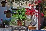 GriechenlandWeb.de Katalagari Kreta - Departement Heraklion - Foto 22 - Foto GriechenlandWeb.de