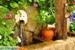 Spili | Rethymnon Kreta | Foto 5 - Foto van De Griekse Gids