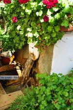Spili | Rethymnon Kreta | Foto 8 - Foto van De Griekse Gids