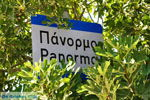 Panormos Kreta | Rethymnon Kreta | Foto 1 - Foto van De Griekse Gids