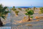 GriechenlandWeb.de Rethymnon Stadt | Rethymnon Kreta | Foto 66 - Foto GriechenlandWeb.de