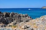 Damnoni | Rethymnon Kreta | Foto 20 - Foto van De Griekse Gids