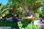 Damnoni | Rethymnon Kreta | Foto 38 - Foto van De Griekse Gids