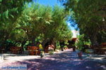 Damnoni | Rethymnon Kreta | Foto 39 - Foto van De Griekse Gids