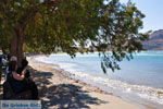 Plakias | Rethymnon Kreta | Foto 8 - Foto van De Griekse Gids