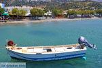 Plakias | Rethymnon Kreta | Foto 20 - Foto van De Griekse Gids