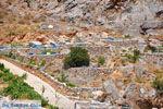 GriechenlandWeb.de Ano und Kato Rodakino |Rethymnon Kreta | Foto 15 - Foto GriechenlandWeb.de