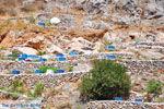 Ano en Kato Rodakino |Rethymnon Kreta | Foto 16 - Foto van De Griekse Gids
